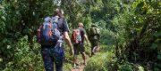 Mabamba Swamp Shoe Bill Birding Tour