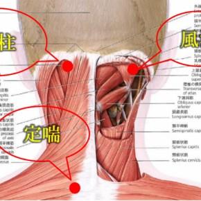 偏頭痛・群発性頭痛に効く鍼治療のツボ