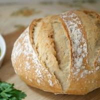 Meine liebsten Brotsorten in München