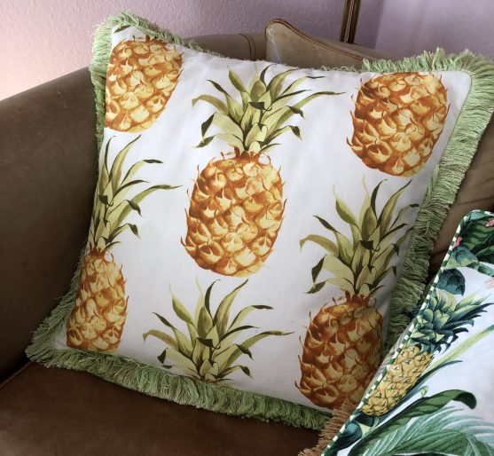 Ananaskissen