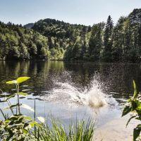Urlaub wie in den 70ern: Die schönsten Badeseen im Kufsteinerland