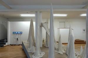 Installation Nextex