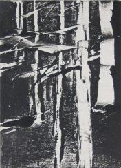 WOODLAND 5, 2015 Monotypie 18 x 13 cm