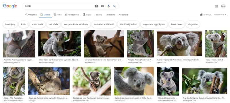 Wyniki wyszukiwania Google Grafika. Czy Optymalizacja grafiki ma sens