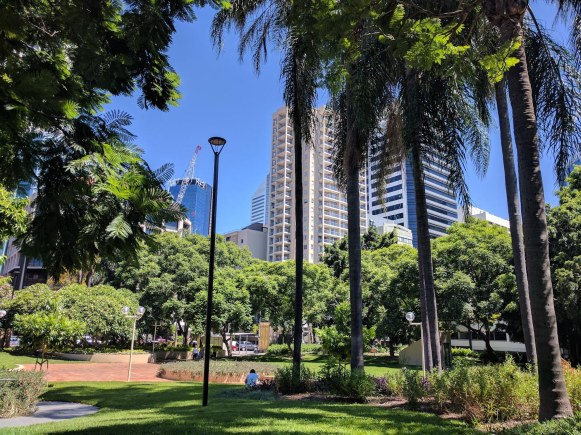 a lush park in a downtown area
