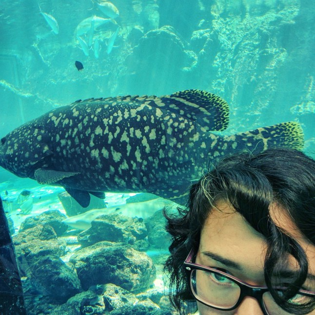 Seafood selfie.