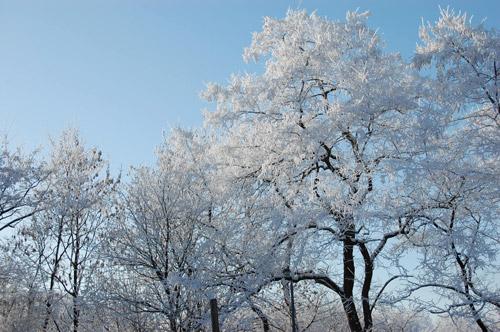 Louvain-la-Neuve en blanc