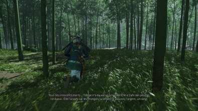 Les fameuses forêts de bambous !