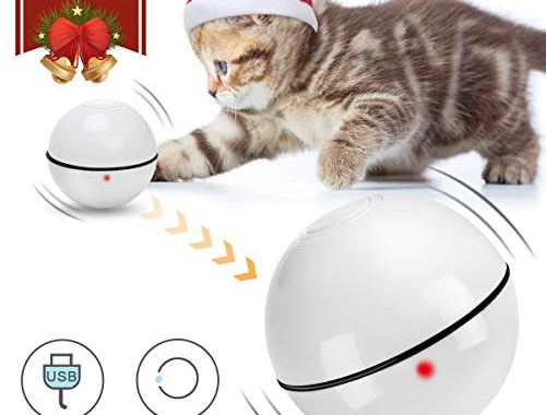 Coolrunner Smart Interactive Cat Toy Ball - Newest Version, CatsToys.jpg?resize=500%2C380&ssl=1