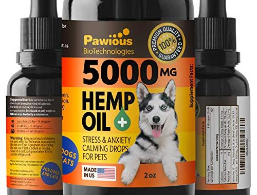 , Hemp Oil for Dogs Cats 5000mg Joint Pain.jpg?resize=500%2C380&ssl=1