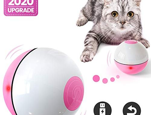 IOKHEIRA Cat Toys Ball, 2020 Newest Version Wicked Ball,, CatsToys.jpg?resize=500%2C380&ssl=1