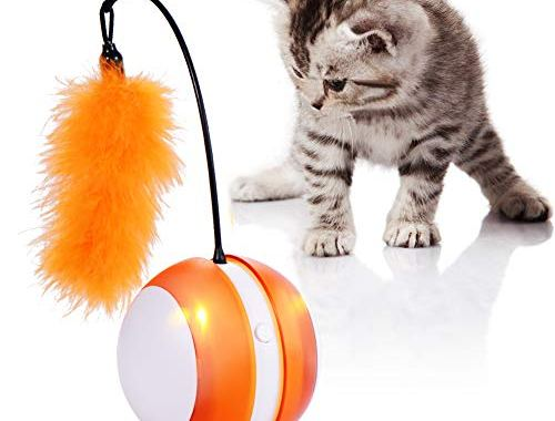 tiitc Smart Cat Toys Interactive, Automatic Cat Toy Ball, CatsToys.jpg?resize=500%2C380&ssl=1