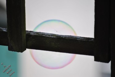 Hubble Bubble (6)