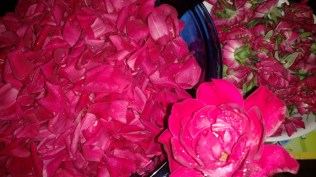making rose jam