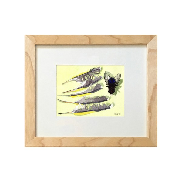 Watercolour painting of a Bluebottle fly and Finch feathers, framed
