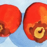 Watercolour Painting: Just Two Sharon Fruit