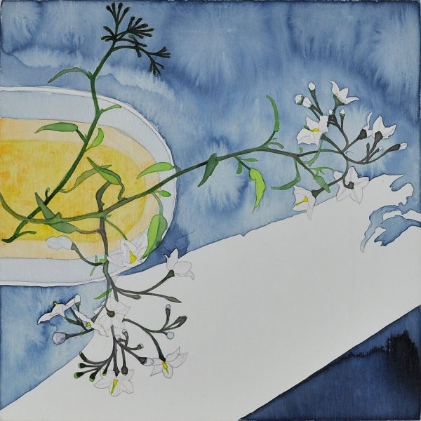 Acrylic Ink on Wood Board plant still life Potato Vine Shadows