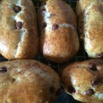 Chocolate chip brioche rolls in the Panasonic breadmaker