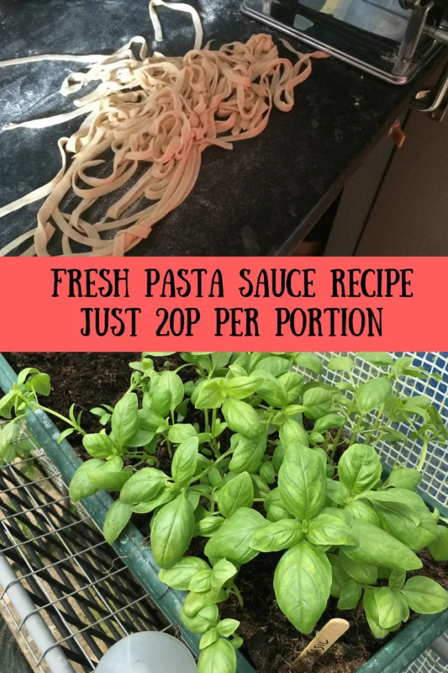 My fresh pasta sauce recipe works out to just 20p per portion. Use tomatoes, basil and lots of vegetables to make an amazing pasta sauce