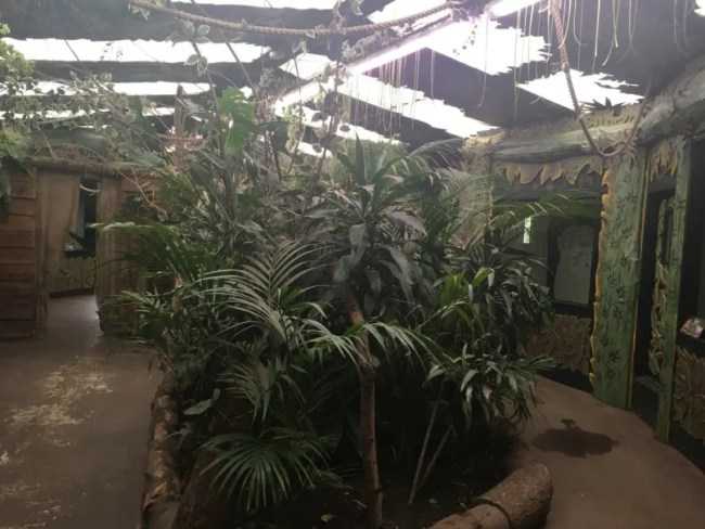 Paradise Wildlife Park Review 8
