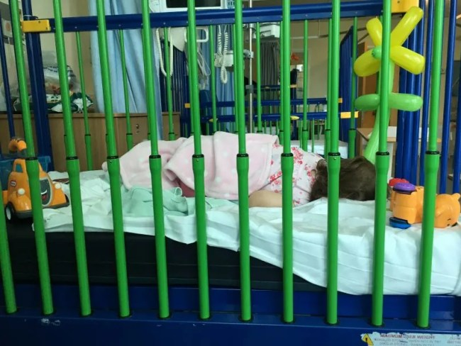 Daisy Staying in hospital