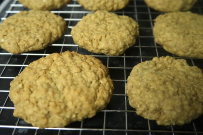 Homemade oat bsicuits - close up - similar to Hobnobs