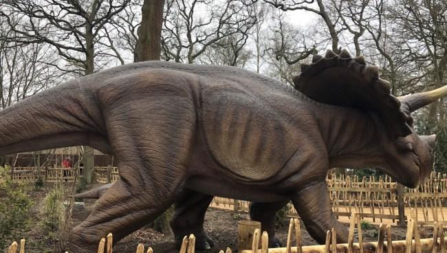 World of Dinosaurs at Paradise Wildlife Park - lifesized animatronics