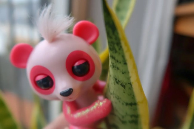 A look at the Pink Baby Panda Polly Fingerling