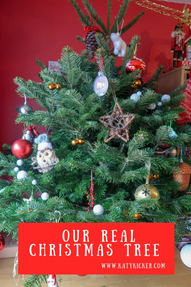 Our real Christmas tree from Pines and Needles.
