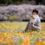 (C) 佐藤克之 Katsuyuki Sato / Kworks,Inc.