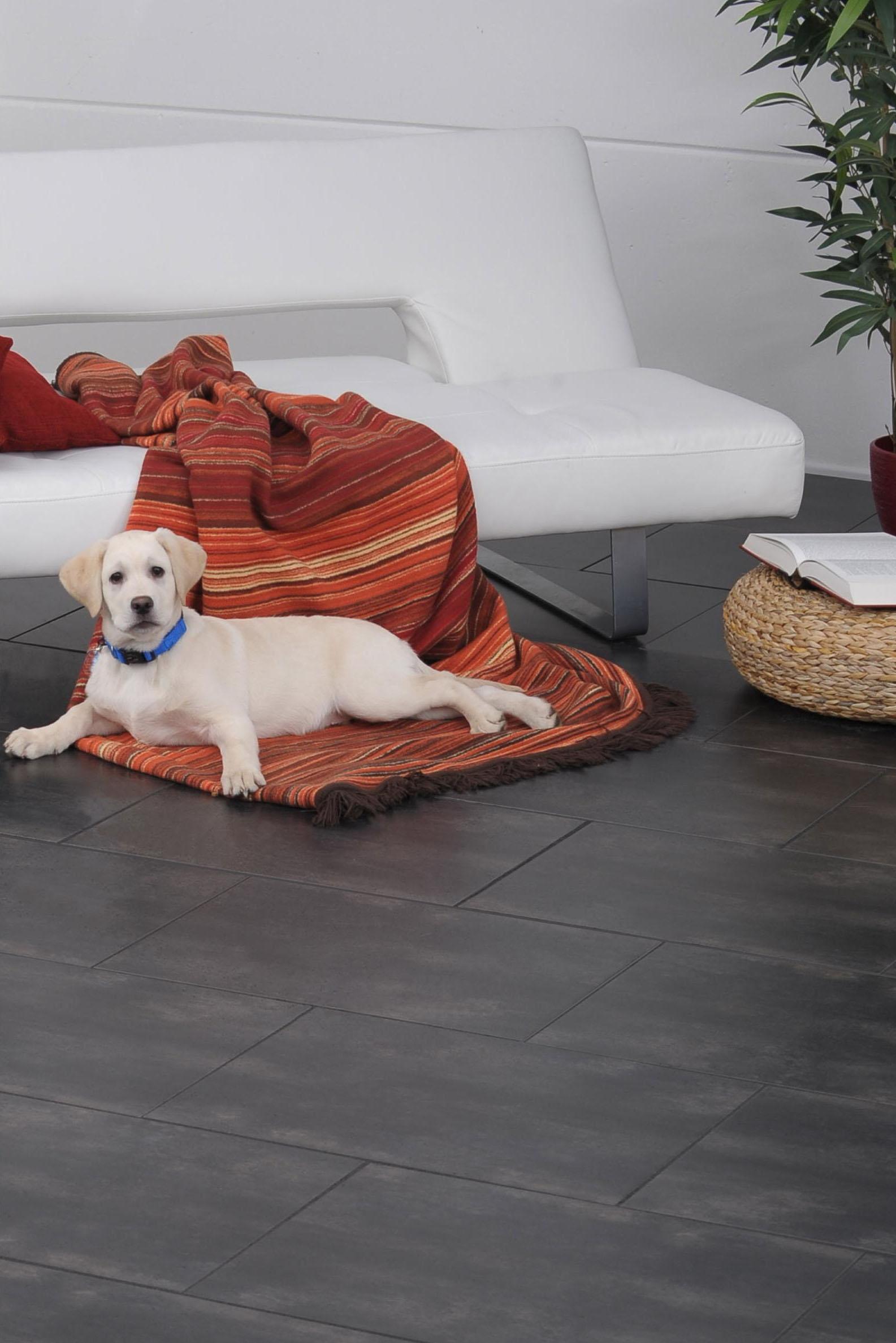 Ob schmutzige Hundepfoten oder lästiger Fellwechsel: Fliesen lassen sich im Nu reinigen - und Tierhaare können sich nicht auf der Oberfläche festsetzen.