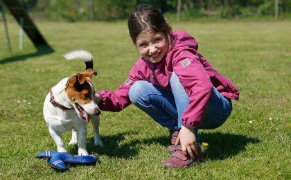 Prellungen beim Hund erkennen und behandeln