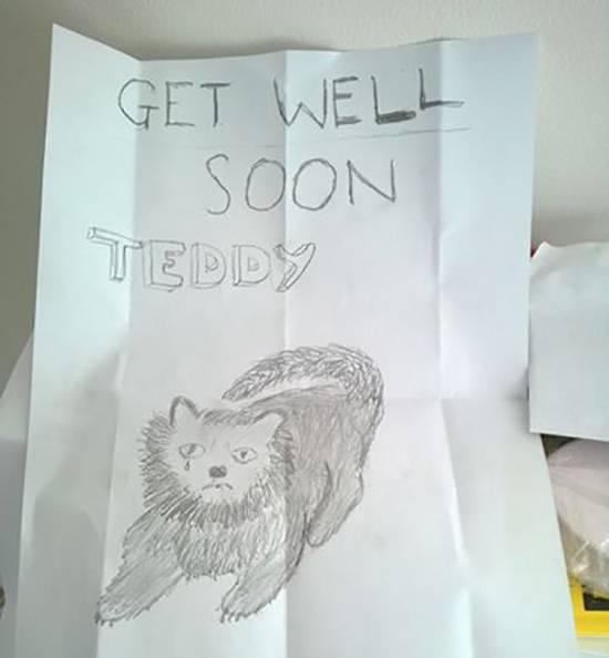 teddy_missing