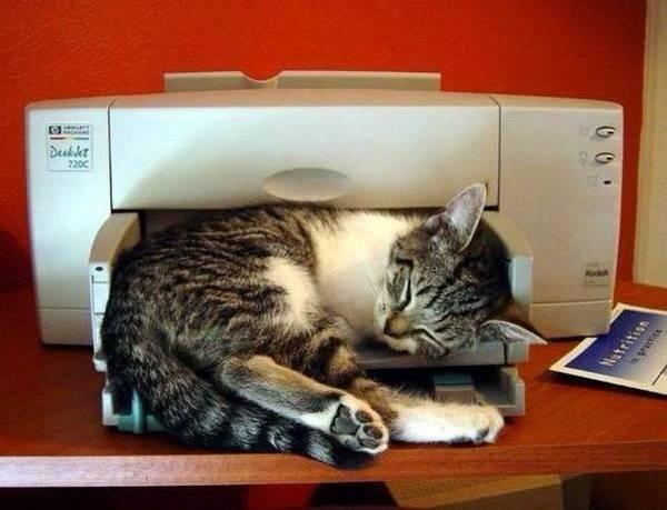 blocked printer