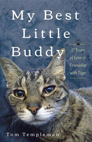 Tiger book cover