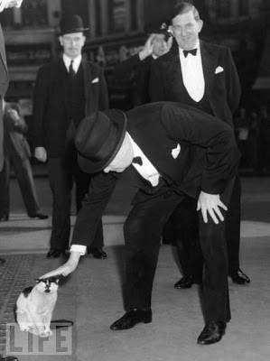 Winston Churchill pets a cat
