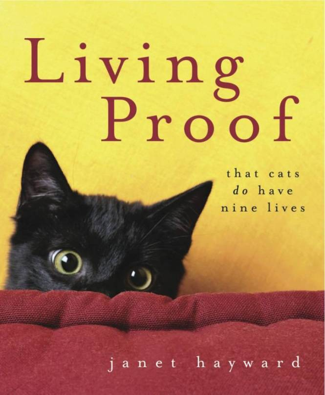 Living Proof front cover