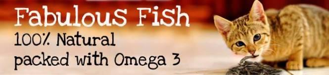 cat-fish-retail-700x160