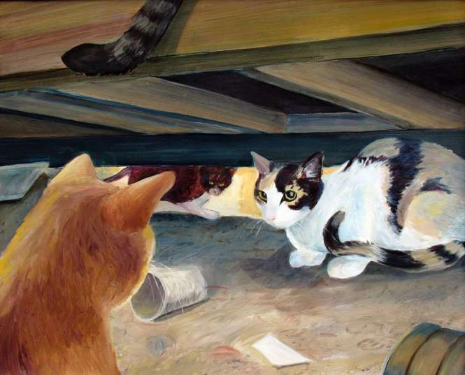 Cats under a building