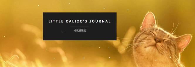little calico