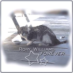 Rory Williams, Badge