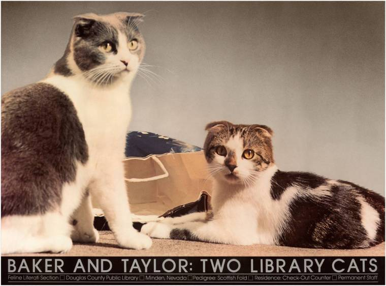 Courtesy Baker & Taylor, LLC