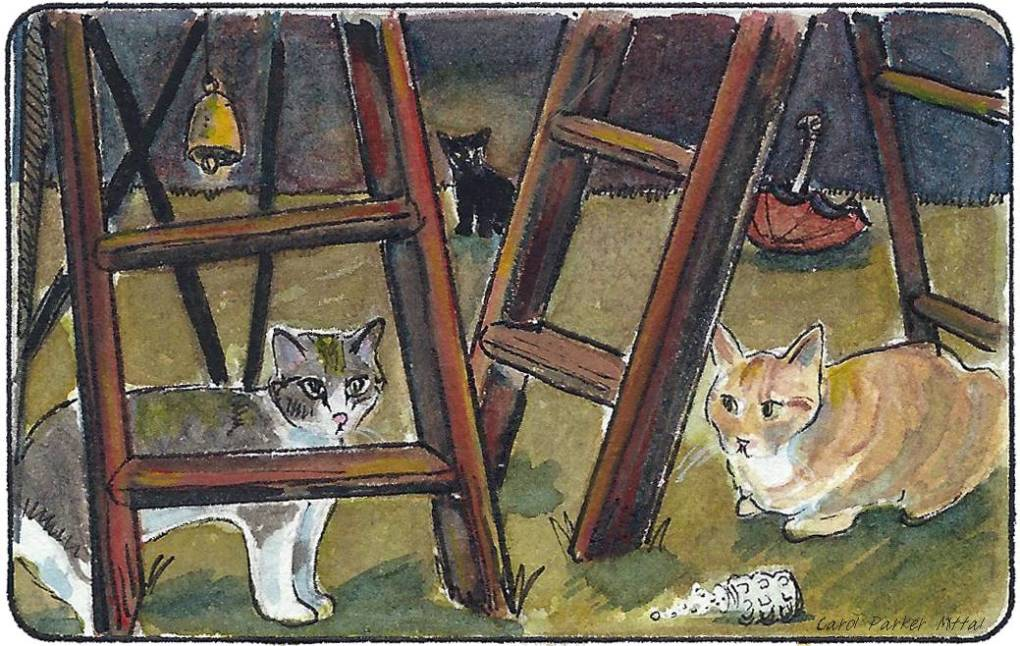 Cats under ladders
