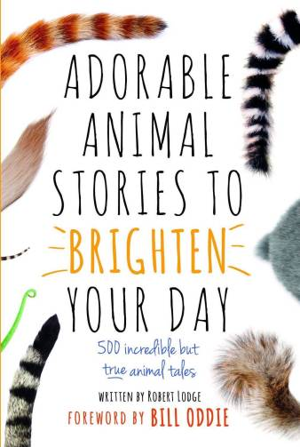 adorable animal stories