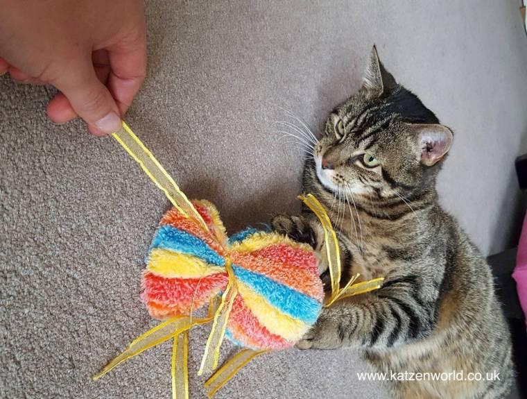 cat-candy-4