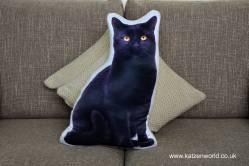 asc-1034-black-cat-sofa