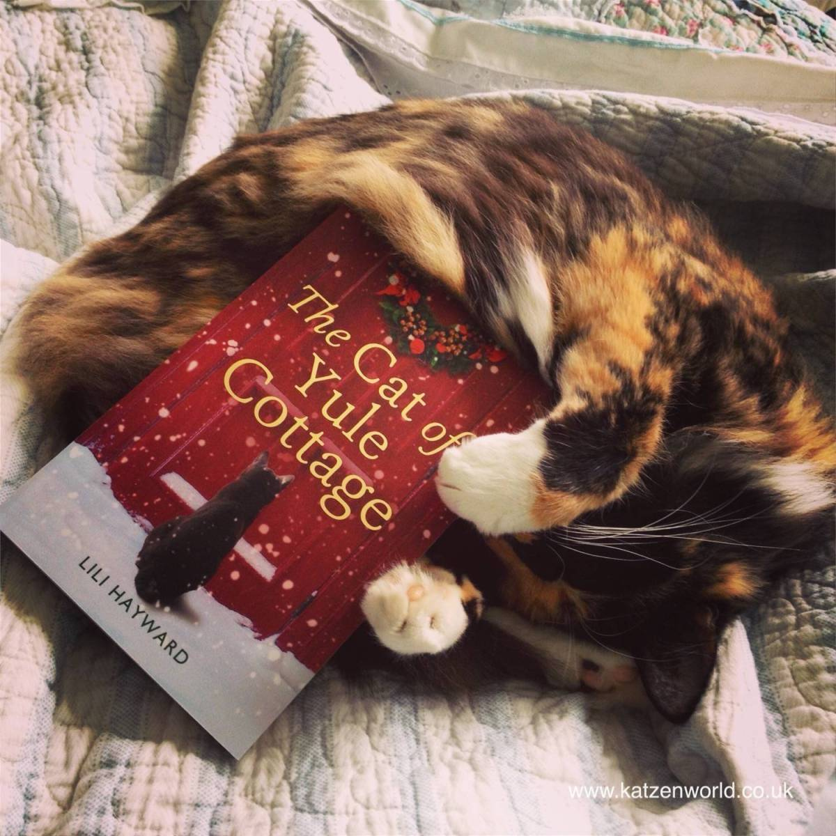 Worldwide Giveaway: The Cat of Yule Cottage
