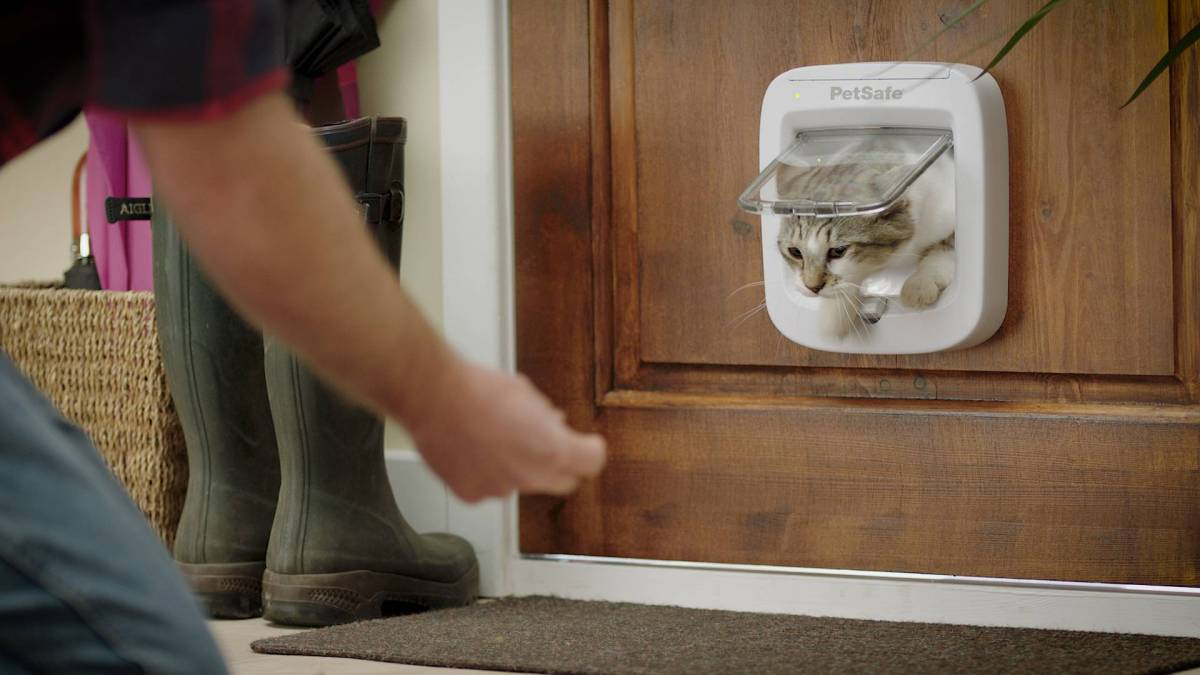 Giveway: New High-Tech Cat Flap Offers Freedom For Felines