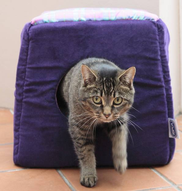 Copy of RSPCA Three in One Cat Bed - Purple