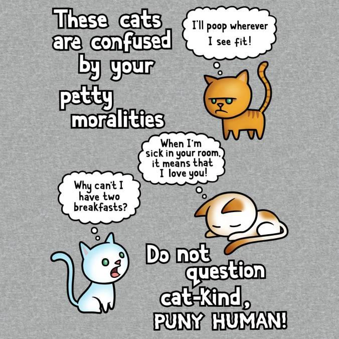 cat moralities